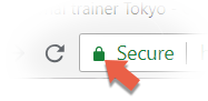 SSL cert mark